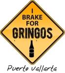 I Brake For Gringos Puerto Vallarta